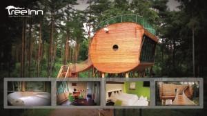 Zweites Luxus-Baumhaus im Wolfcenter eröffnet