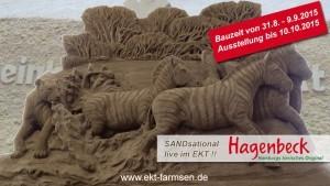 Sandsational im EKT Farmsen